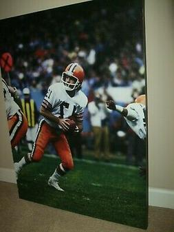 Canvas Cleveland Browns Brian Sipe 30 x 40 Photo Art Paintin